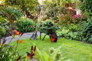 garden_maintenance